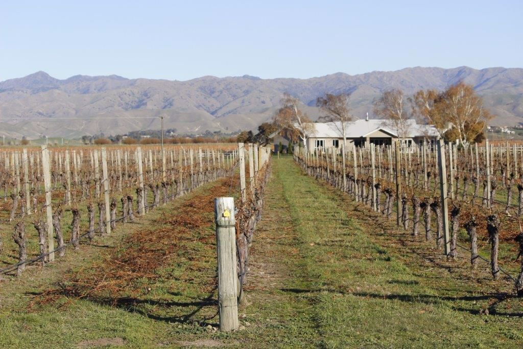 Picture for category Single Rotor Vineyard & Orchard Mowers